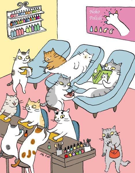 CATS - GETTING THEIR NAILS DONE