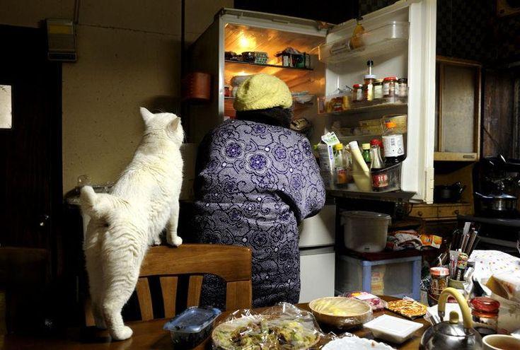 Miyoko Ihara has been taking photographs of her grandmother, Misao and her beloved cat Fukumaru since their relationship began in 2003. Their closeness has been captured through a series of lovely photographs. 11-28-12 / Miyoko Ihara