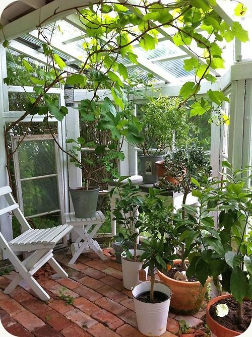 Scandinavian Greenhouse / Photos by Mia Decoy. More images on...