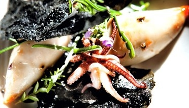 Small squids, wild salads and burned bread @Restaurant CLOU