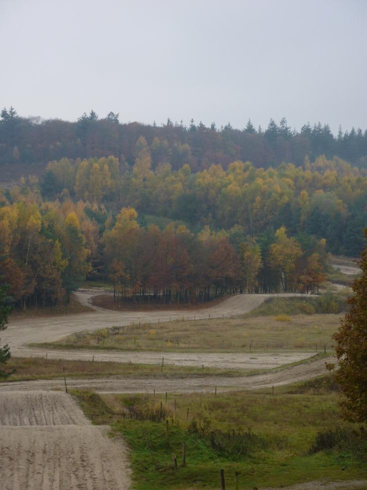 Rhenen Kwintelooijen 11-11-2012