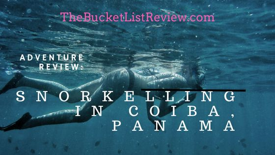 Coiba is being called 'the next Galapagos' and has amazing marine bio-diversity and is a major transit zone for shark, whale and ray species. Snorkelling here is world class! Check out the review! #travel #diving #snorkelling #paradise #panama #travelblog #traveltips
