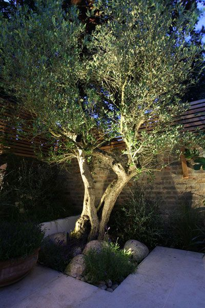 51 outdoor lighting ideas to light up your garden with style - Garden Ideas Lighting