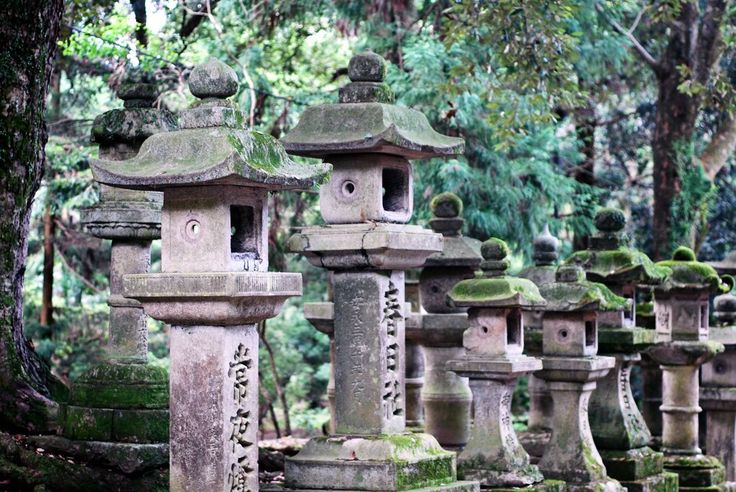 Old stone lanterns outside a temple in Nara, Japan - Natalie Paine.jpg (1028×688)