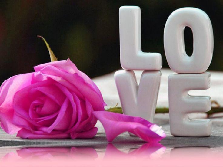 69 best Rose Day Images images on Pinterest | Facebook, A frame ...