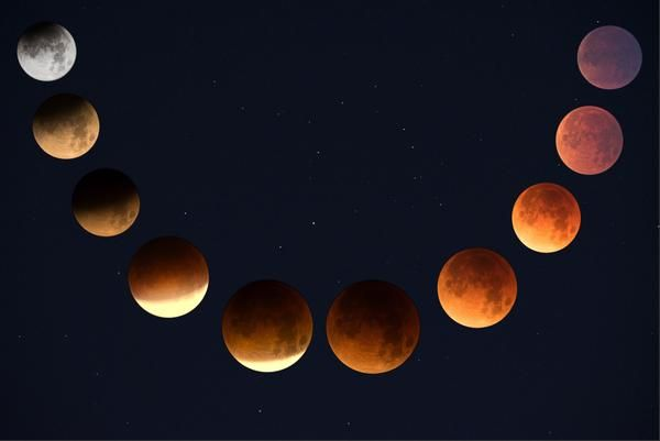 2019 New Moon And Full Moon Calendar In 2020 Blood Moon Eclipse