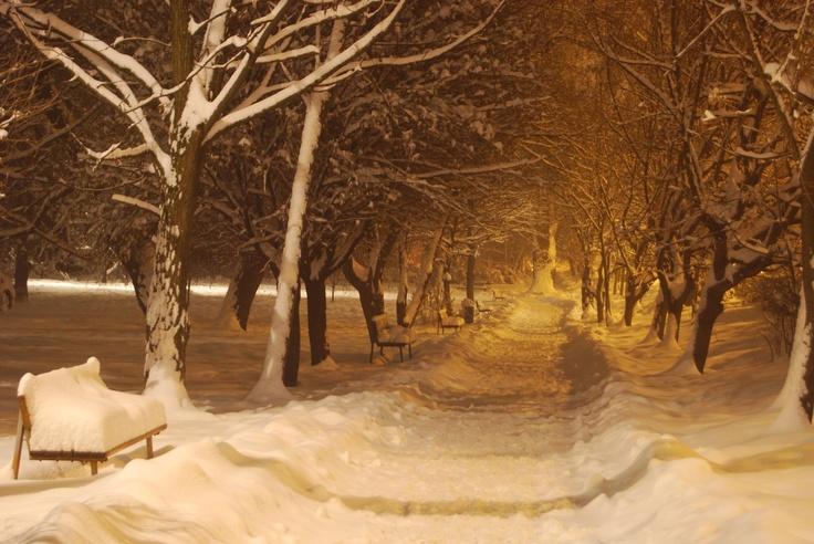 Central Park, Csíkszereda