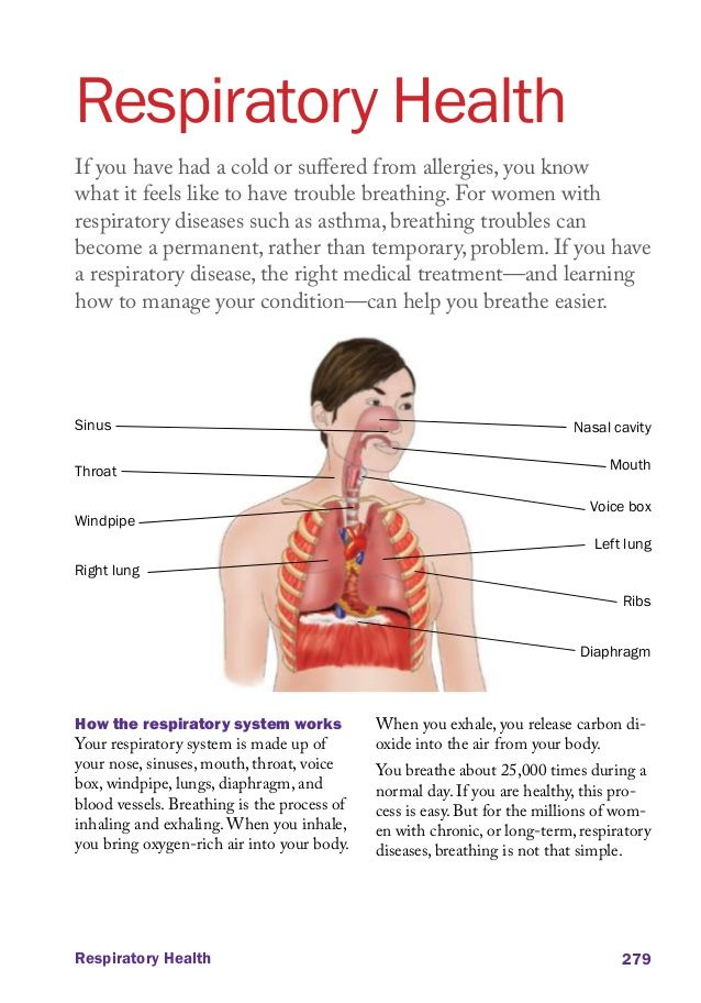 The Effects of Nutrition on the Respiratory System