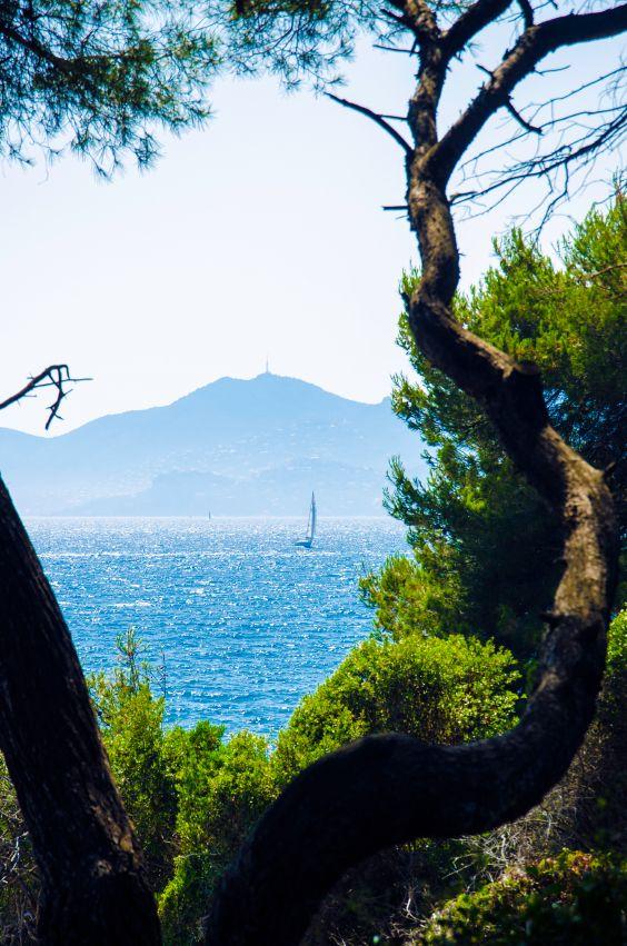 Île Sainte-Marguerite ou Saint-Honorat ? Au bord de la Méditerranée, face à la…
