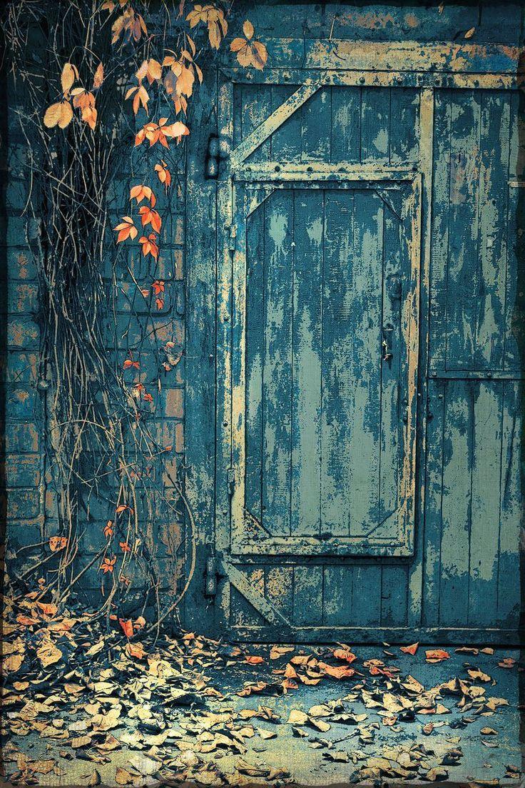 Automatic door details by borolo doors and windows doors rare - Cellar Door Autumn On The Threshold