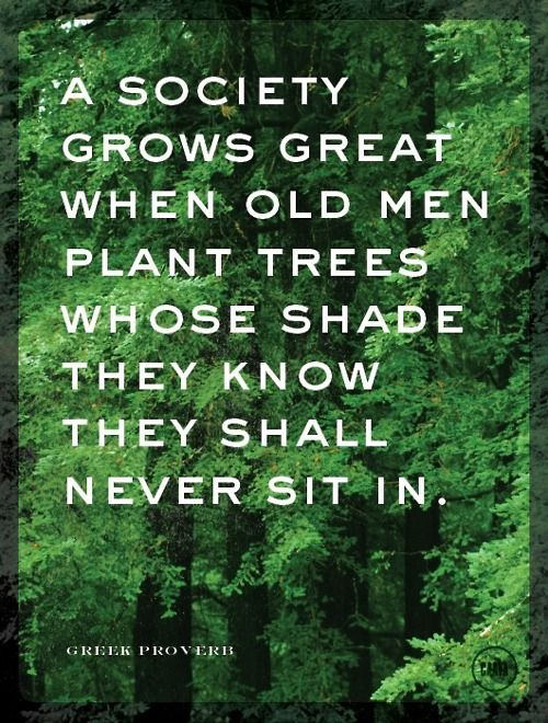 "This is similar to one of my favorite quotes: ""The true meaning of life is to plant trees, under whose shade you do not expect to sit"" - Nelson Henderson"