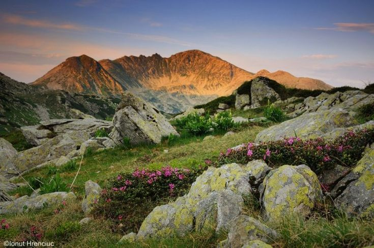 Retezat National Park: Romania's Most Precious Wilderness