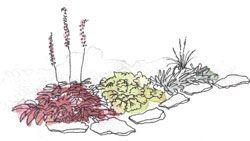 Enteléa Trädgård - Trädgårdsdesign, Trädgårdsarkitekt, Trädgårdsrådgivare