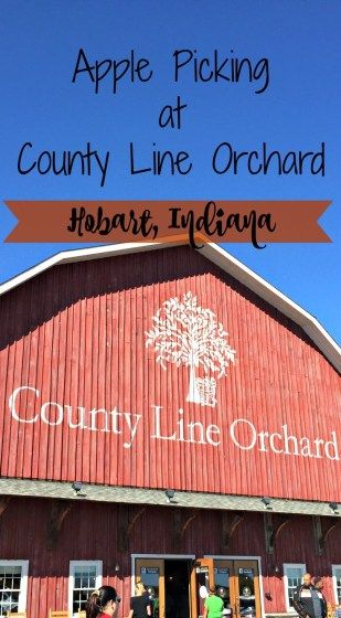 Apple Picking at County Line Orchard- Becoming a Traveling Family