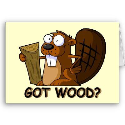 Beaver humor