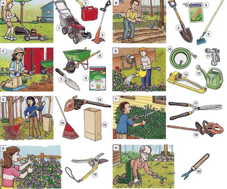 67 best b images on pinterest learn english learning for Gardening tools used in planting crossword clue