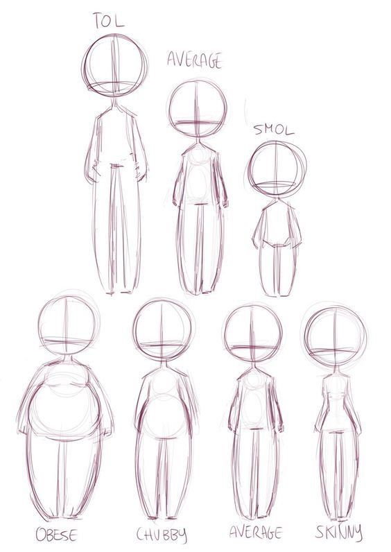 drawing guides of types of body shapes for artists