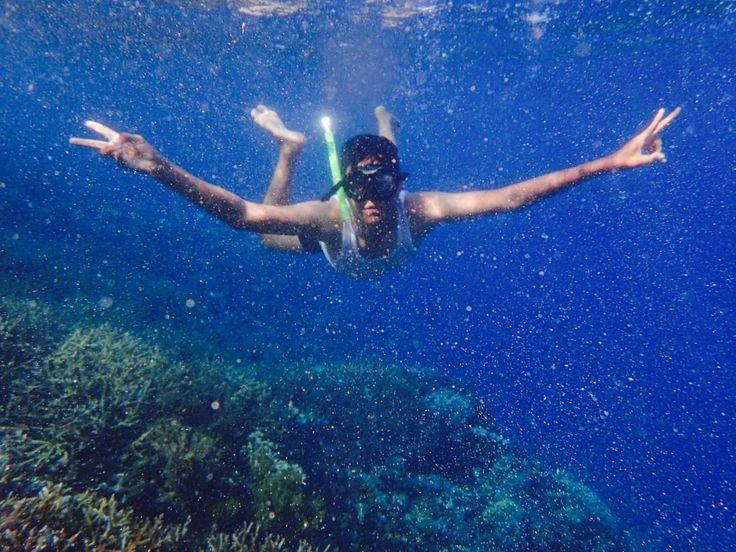 Swim and Fly... #nature #beach #sumbawa #indonesia #traveling