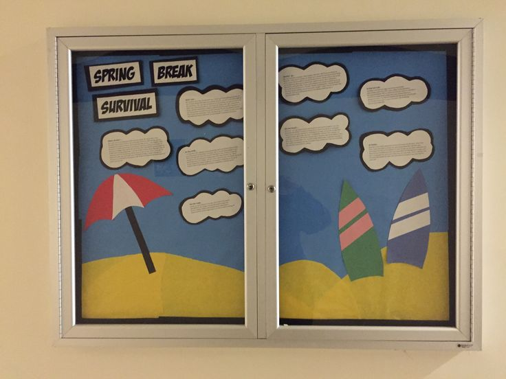 202 Best Images About Warrior Bulletin Boards On Pinterest