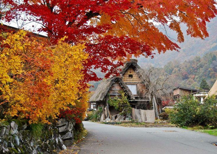 The ancient Village of Shirakawago (Japan)