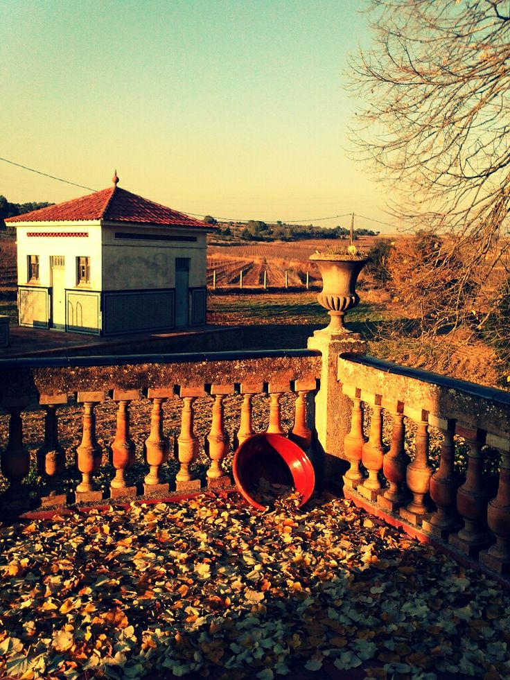Autumn views from Masia's terrace
