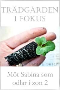 Sabina i Trädgården i fokus