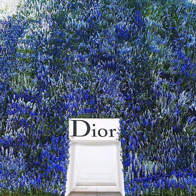 Thursday Inspo // 11 - Bella to Bella: Dior, Flower Wall, PFW, Paris Fashion Week