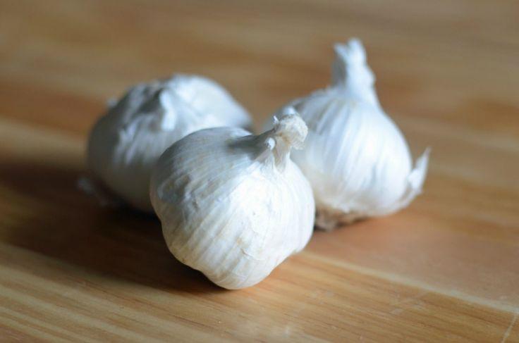 Pudra de usturoi este un aditiv cu adevărat universal! Ea oferă alimentelor o aromă apetisantă, lăsând, în același timp, respirația proaspătă. Datorită solubilității sale mari, este ideală pentru prepararea sosurilor și marinadelor. Această mirodenie este adăugată practic în toate felurile principale și secundare de mâncare, în salatele calde, crutoane, tocănițele de legume și omletă. Pe lângă gustul și aroma sa, pudra de usturoi păstrează toate proprietățile folositoare ale usturoiului…