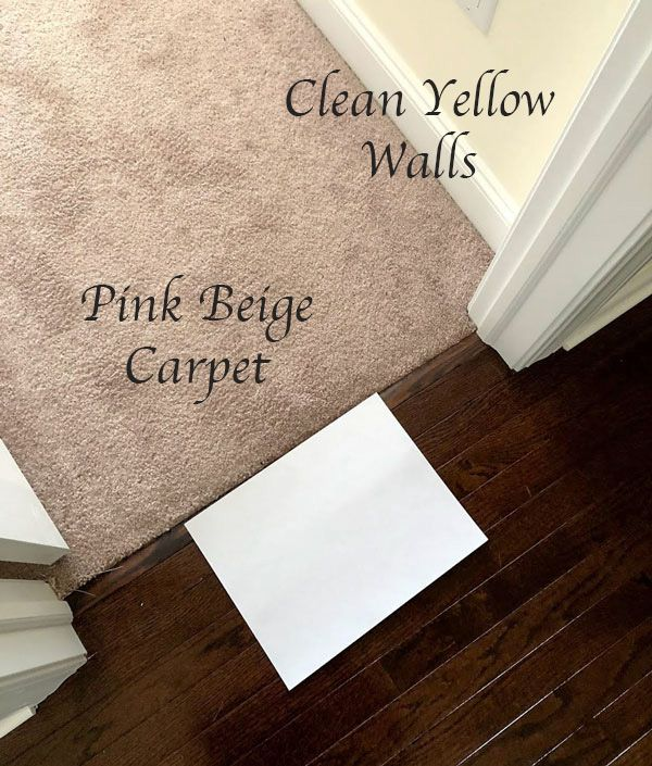 4 Steps To Choosing The Perfect Wall To Wall Carpet Colour Wall