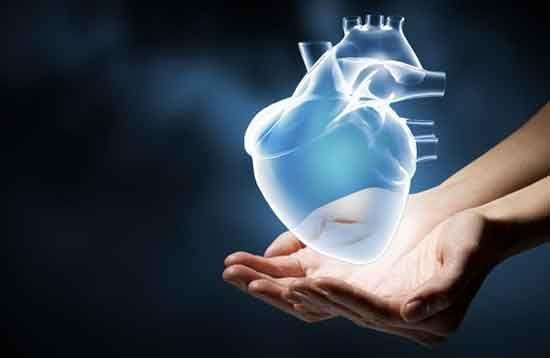 Condividi Pubblica tweet Pin E-mail La prevenzione dell'infarto del miocardio non è diversa da quella indicata in generale per le patologie cardiovascolari. Vediamo più ...