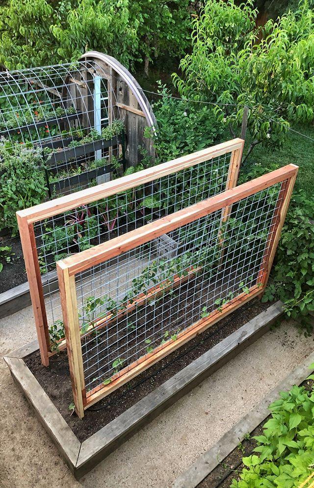 Pin On Chicken Keeping Urban Farming