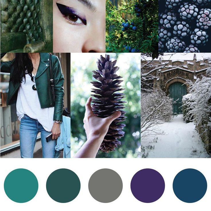 ❄️Wintery cool juniper, frosted tree bark, mossy leather – Here's our COOL January inspiration for Yarn + Fiber clubs. Find more info on signing up or gifting #fiberistaclub at www.fiberista.club ❄️#yarn #color #fiber #knit #knitting #knittersofinstagram #spinnersofinstagram #knitspo