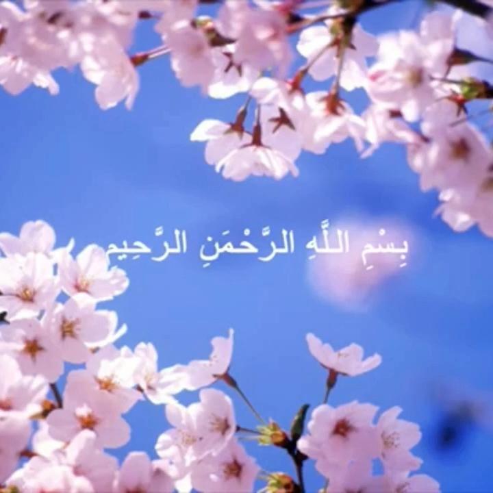 صوت يريح البال والنفس Video Muslim Bride Quran Recitation Islamic Teachings