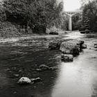 Upstream II - Elora Gorge