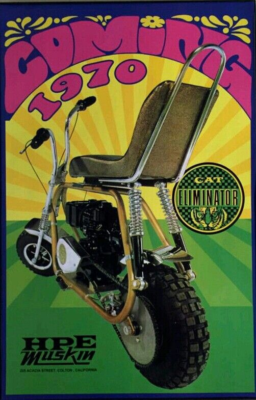 Cat Eliminator Mini Bike Seat : Ideas about adult tricycle on pinterest