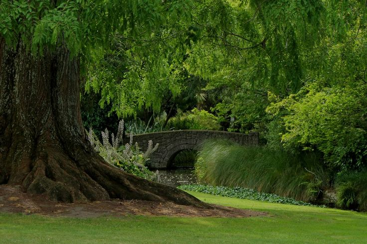 Cornwall Park, Hastings New Zealand. Photo taken by @Kate Mazur Watson