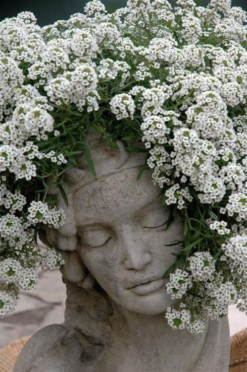 A great combinatioin of a head planter with trailing flowers. Also pretty with ferns or ivy