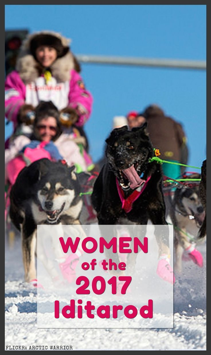 Mush! Read about the 17 badass ladies of this years 1,000 mile dog sled race across Alaska. The women of the 2017 Iditarod are tough as nails and have some incredible stories to tell.