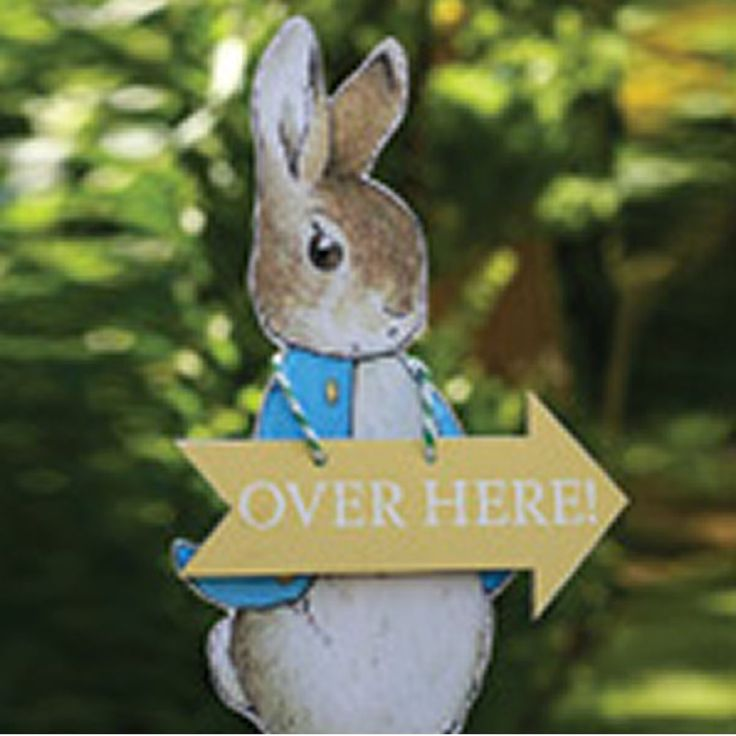 Peter Rabbit Party Tableware, Baby Shower, Christening,Plates, Cups, Napkins etc
