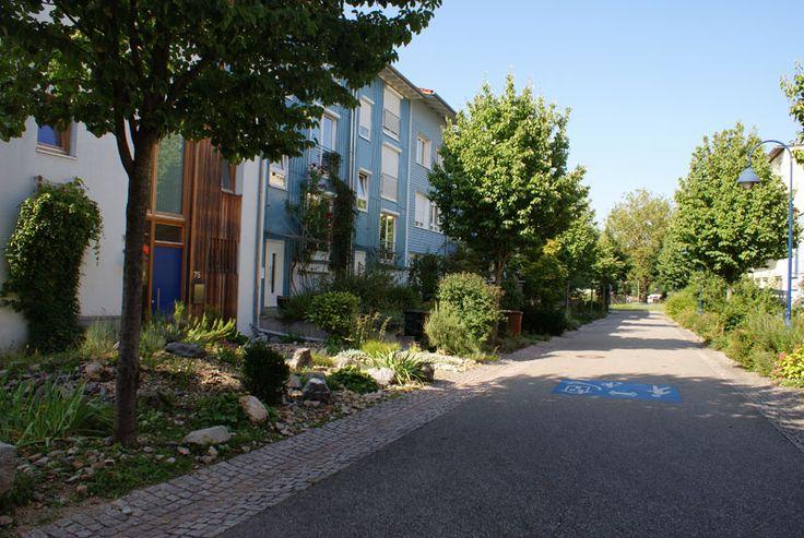 Une rue typique du quartier Vauban : une voie partagée, un alignement d'arbres et des « jardins de devant » qui grimpent jusque sur les façades