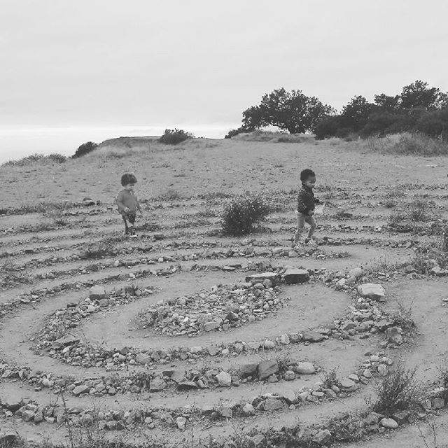 jazz smollett warwell (@jazzsmollettwarwell) instagram post - Oh these California babies Playing in the labyrinth together at the top of a h...