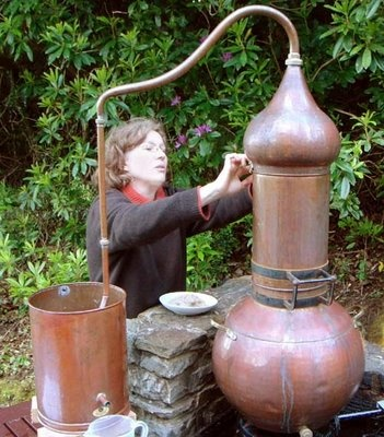me and my copper still: preparing a distillation of 2 kg of bay berries
