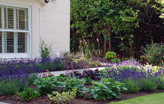 small cottage front yard landscaping - Google Search