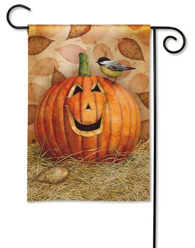 Pumpkin Pals Fall Garden Flag by BreezeArt. $11.50. Design printed on both sides. Printed on SolarSilkTM 600 denier polyester. Vivid colors are fade and mildew resistant. Artist: Tim Coffey. Premium garden flag measures 12.5 inches wide x 18 inches high. Pumpkin Pals Decorative Fall Garden Flag at our every day low price. Fall garden flag features adorable chickadee perched on large smiling jack-o-lantern. Beautiful artistic detail, pretty autumn color background....