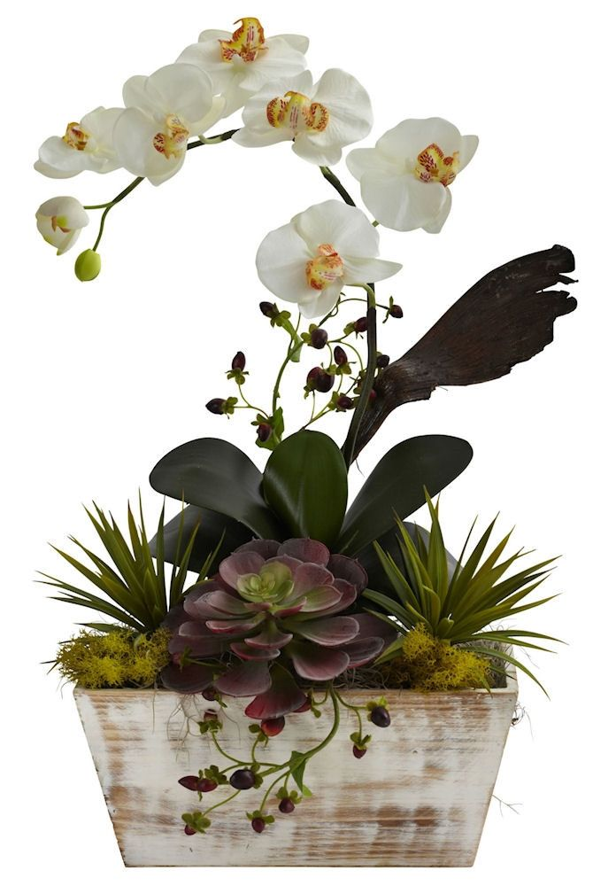 The Phalaenopsis and Succulent Silk Arrangement will make a warm and welcoming addition to your home or office. Comes in a contemporary whitewash wood planter. Overall Dimensions: 21 inches high x 13