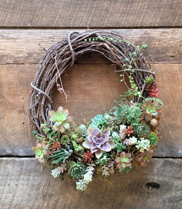 This project will show you how to update and refresh a succulent wreath for the next growing year. With a few care tips this wreath will last for years.