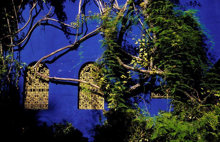 A special shade of blue: Marrakech's Majorelle Gardens par Fotopedia Editorial Team