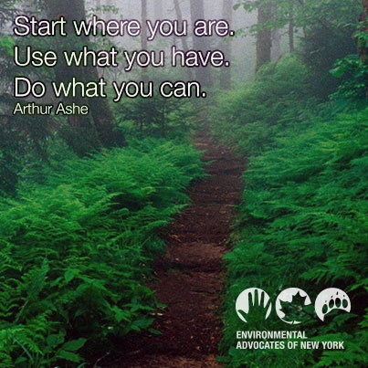 start where you are use what you have do what you can -- arthur ashe. Inspiring environmental quotes. Environmental Advocates of New York.