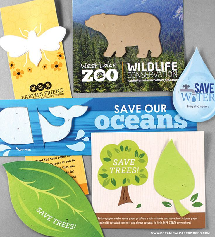 Be a part of a conversation about #CONSERVATION with these all NEW seed paper #promotionalproducts. #greenbusiness