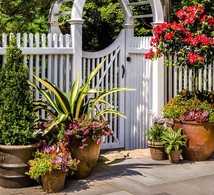 Foyer Planters : Entryway containers patio gardening planters